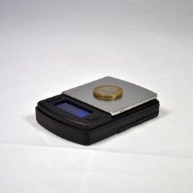 Tasca scala 0,1 / 500g FW PRO - XA1